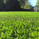 A close up of an artificial grass installation in Bristol by Turf King